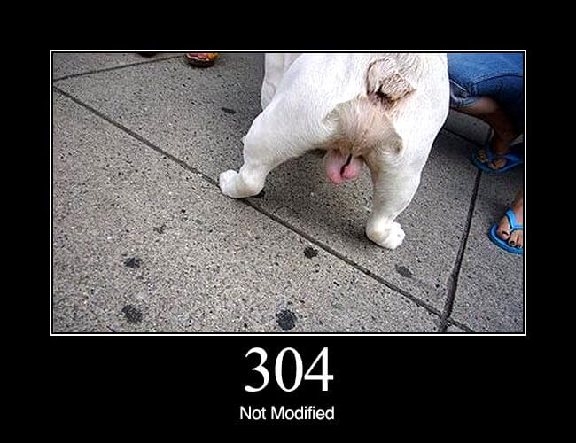 304 Not Modified