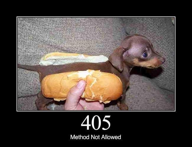 405 method not allowed http status dogs