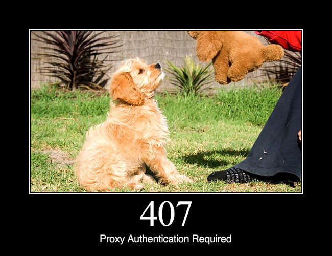 407 Proxy Authentication Required