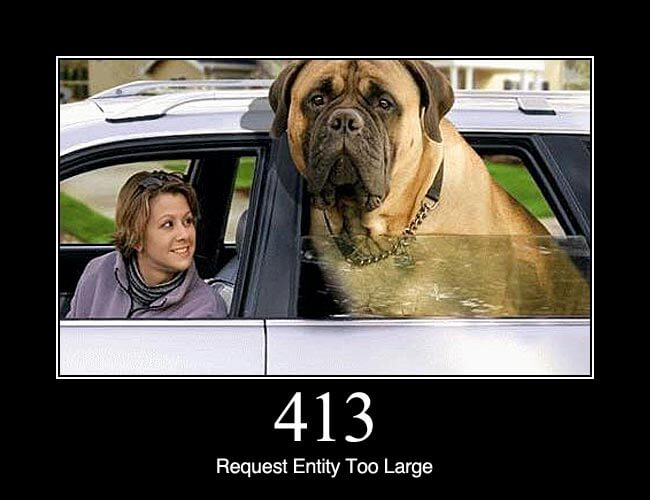 413 Request Entity Too Large