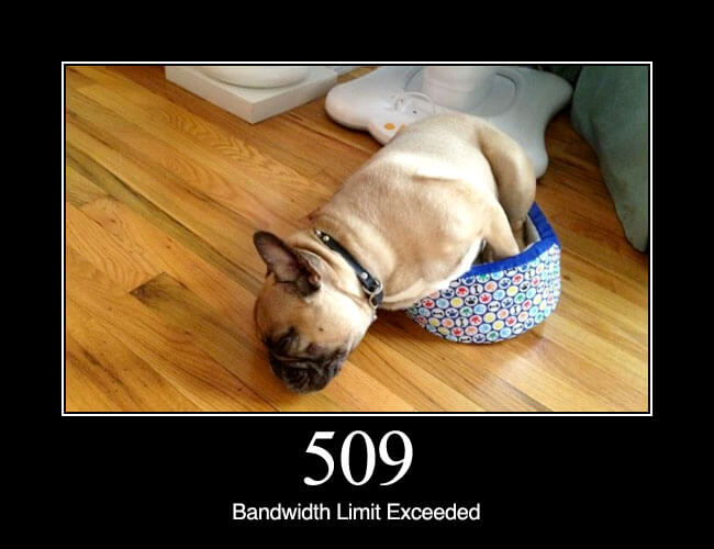 509 Bandwidth Limit Exceeded