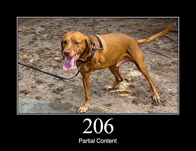 206 Partial Content