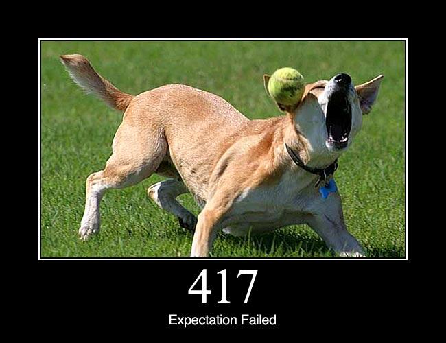 417 Expectation Failed