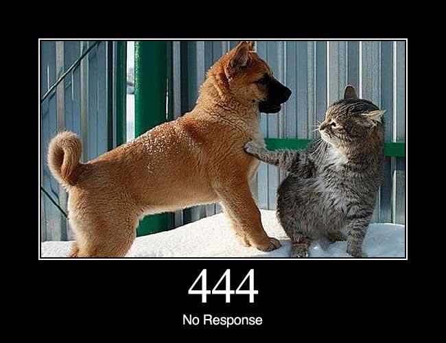 http status dog 444