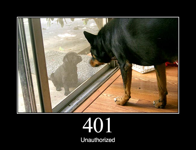 401 Unauthorized